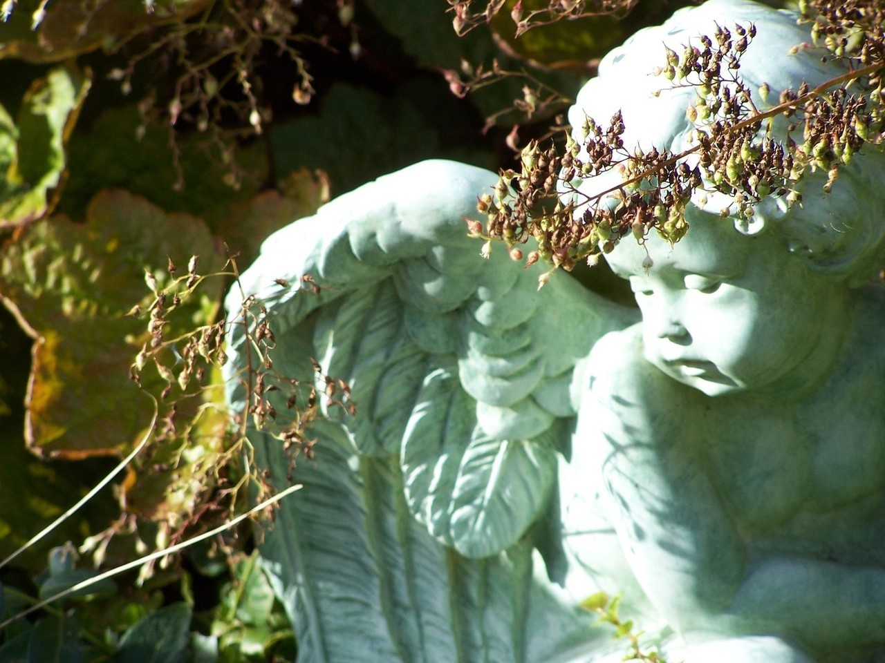 Narzędzia ogrodowe – komfort